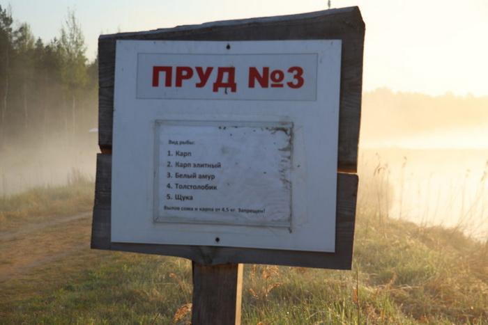Платная рыбалка в Беларуси - Маковза ... | Отчеты о рыбалке в Беларуси