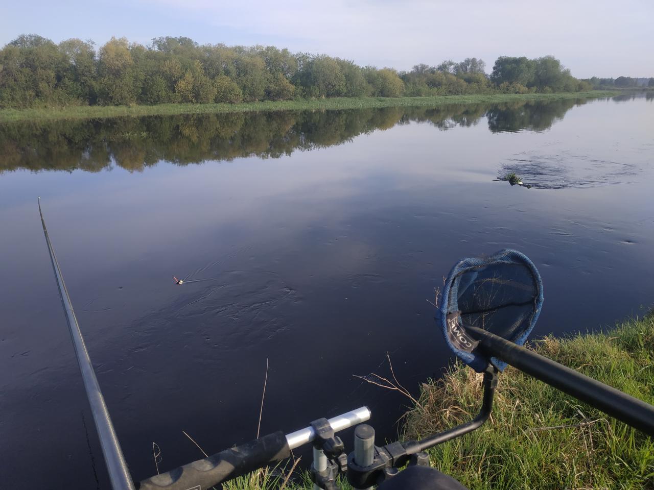Пока идет активный разбор по косточкам меня и ... | Отчеты о рыбалке в Беларуси