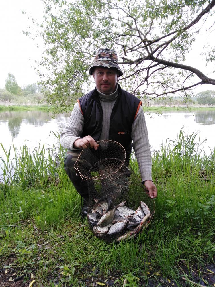 С понедельника на вторник выбрался по рыбачить. Район ... | Отчеты о рыбалке в Беларуси