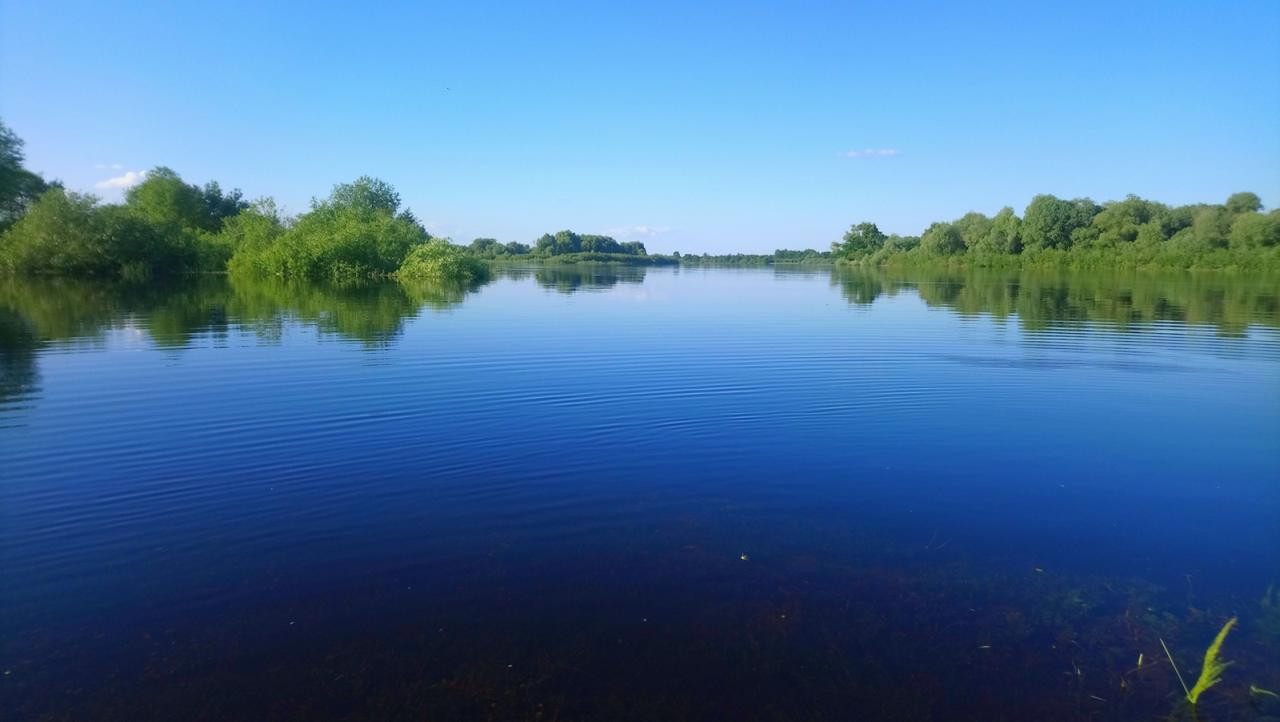 ...Поехали открывать сезон на 9 мая. Район Мозырь ... | Отчеты о рыбалке в Беларуси