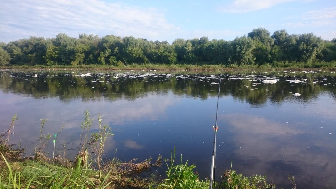 Был с 11 по 13 в районе Стахово ... | Отчеты о рыбалке в Беларуси
