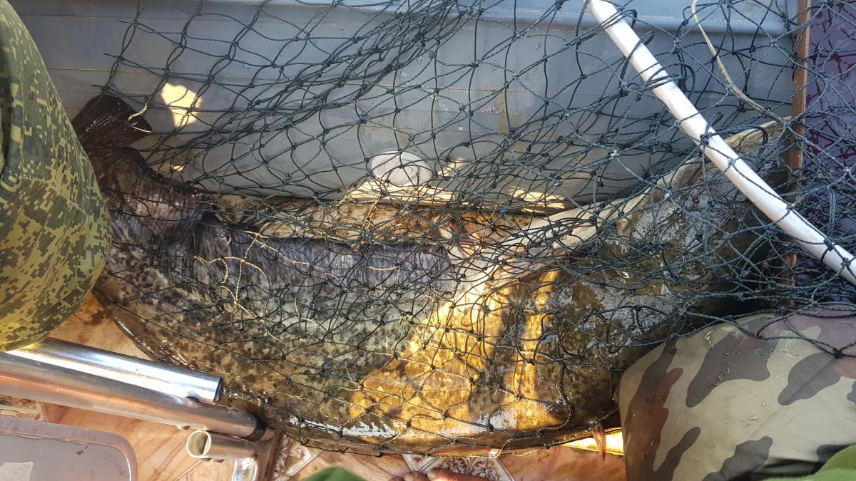 Были на эти выходные на реке ... | Отчеты о рыбалке в Беларуси