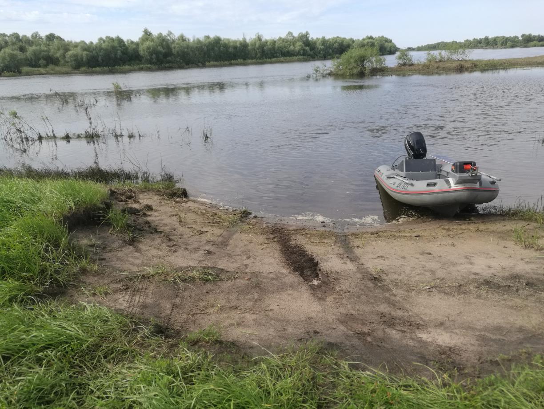 Добрый, были на Припяти с 5 по 7.Сразу ... | Отчеты о рыбалке в Беларуси