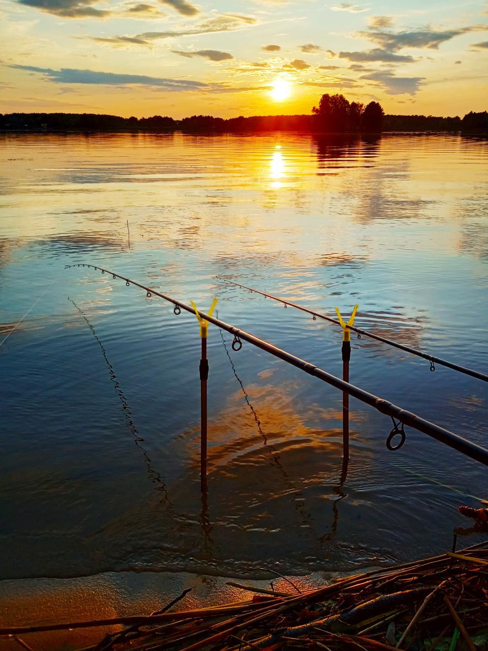 Решил и я посетить Мухавец, раз уж выдались ... | Отчеты о рыбалке в Беларуси