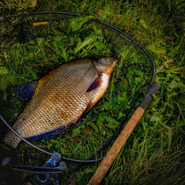 С пятницы на субботу удалось провести время на ...   Отчеты о рыбалке в Беларуси
