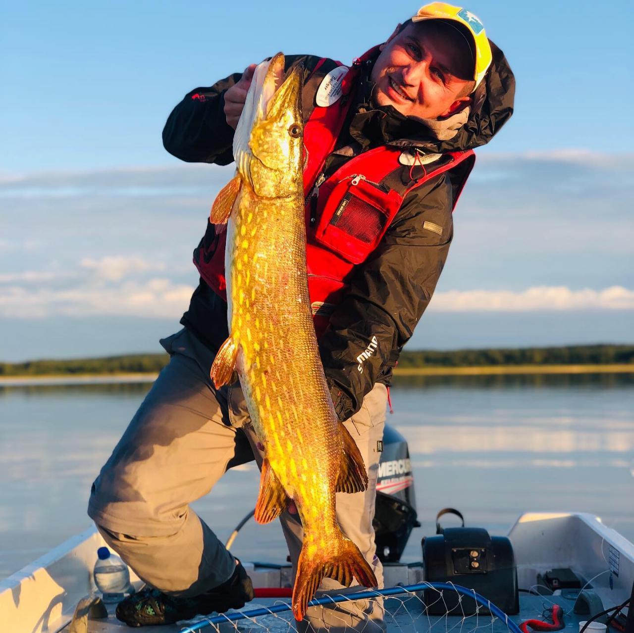 Вечер субботыприехали на ночь, первая поклёвка в раене ... | Отчеты о рыбалке в Беларуси