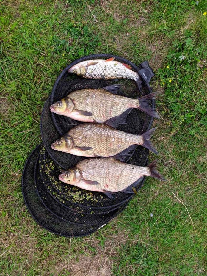 Первый раз пишу отчёт, не судите строго. На ... | Отчеты о рыбалке в Беларуси