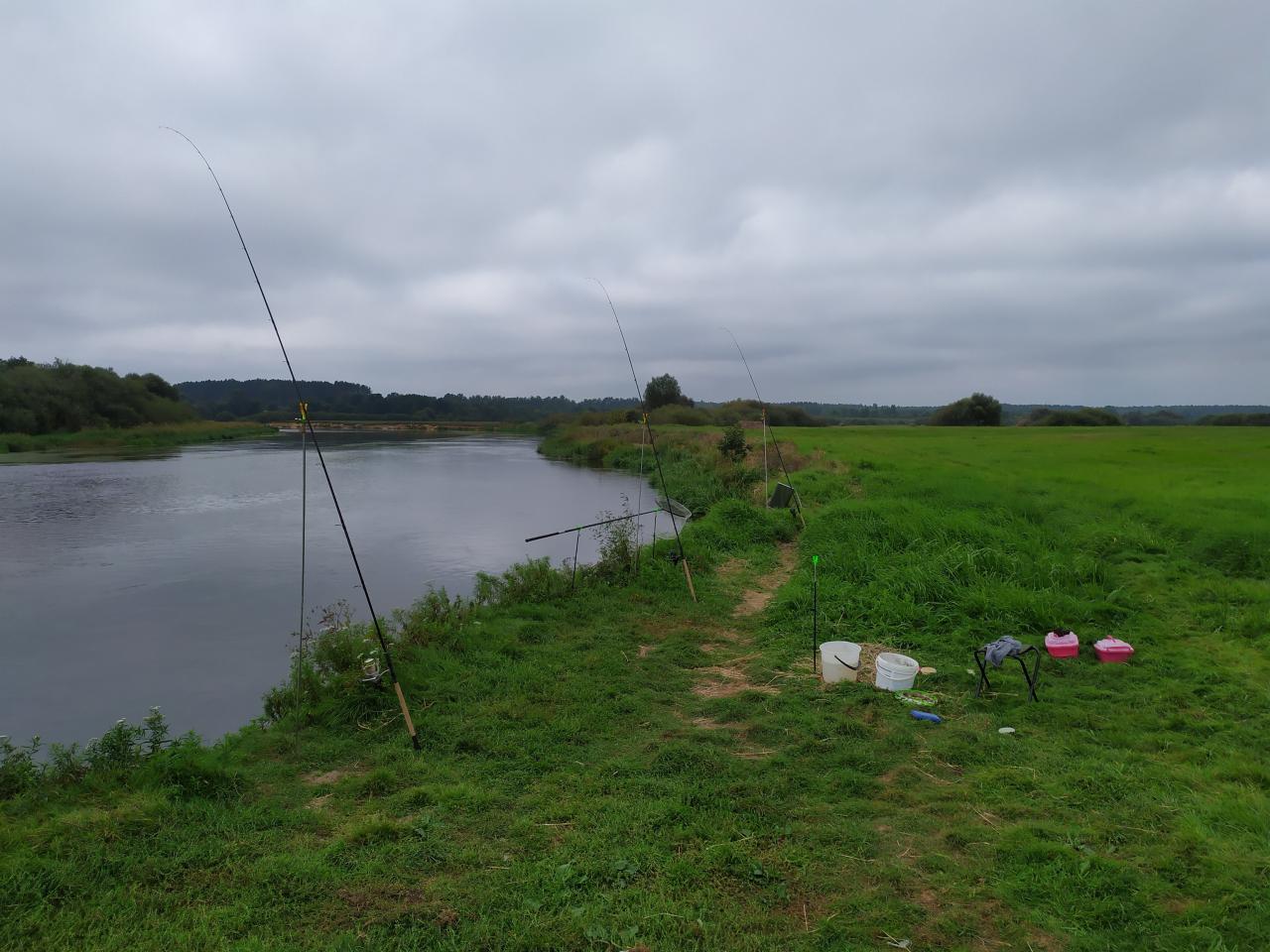 Никогда не доводилось рыбалить ниже Притерпы. Вот и ... | Отчеты о рыбалке в Беларуси