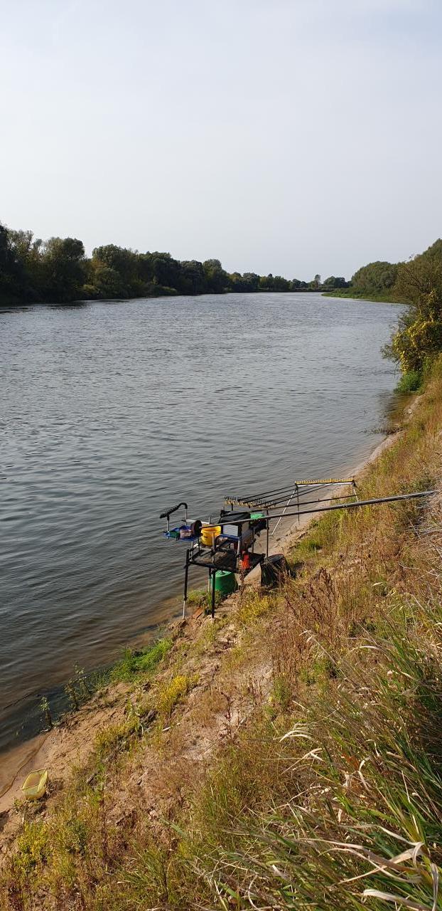 Рыбачил с друзьями в воскресенье на плесе ниже ... | Отчеты о рыбалке в Беларуси
