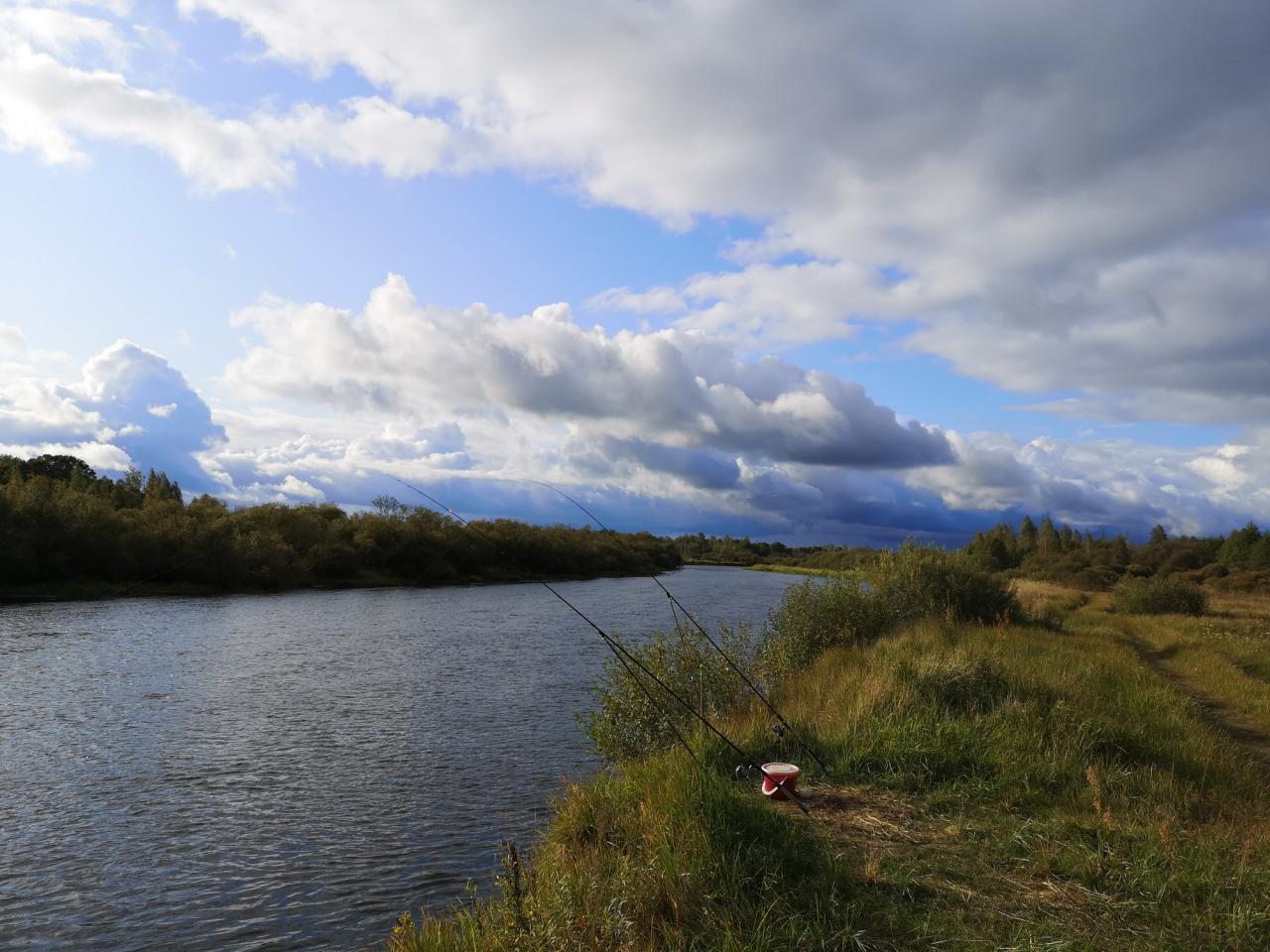 С пятницы по воскресенье были выше Березино. С ... | Отчеты о рыбалке в Беларуси