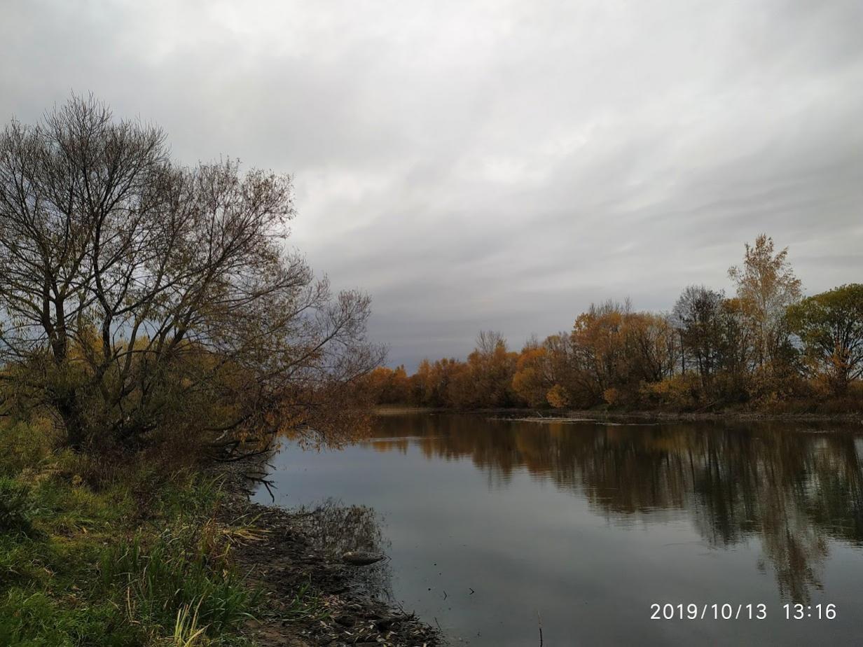 Приехали и мы сегодня на вячу,ловили метров 500 ... | Отчеты о рыбалке в Беларуси