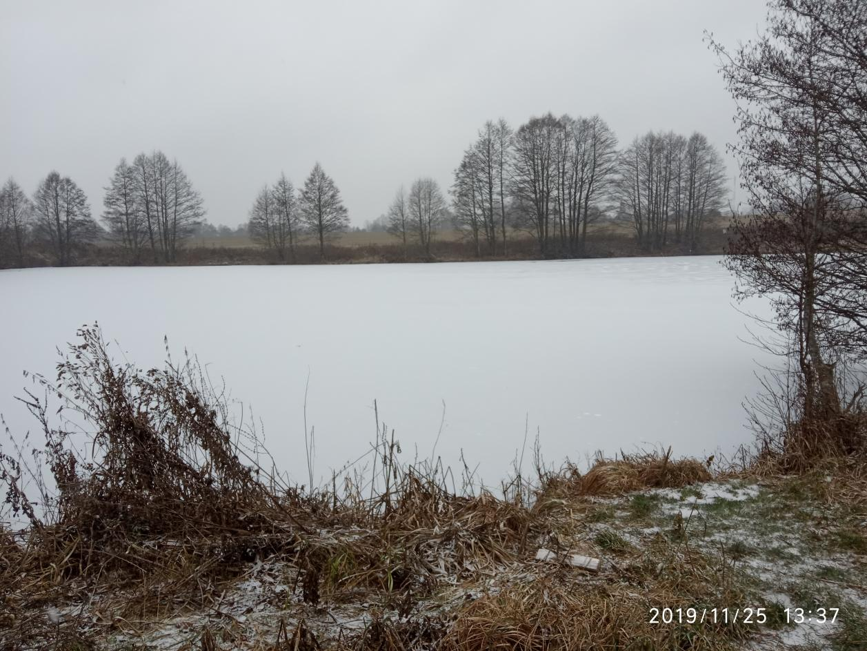 Вчера привез зимние снасти, сегодня решил обкатать, в ... | Отчеты о рыбалке в Беларуси