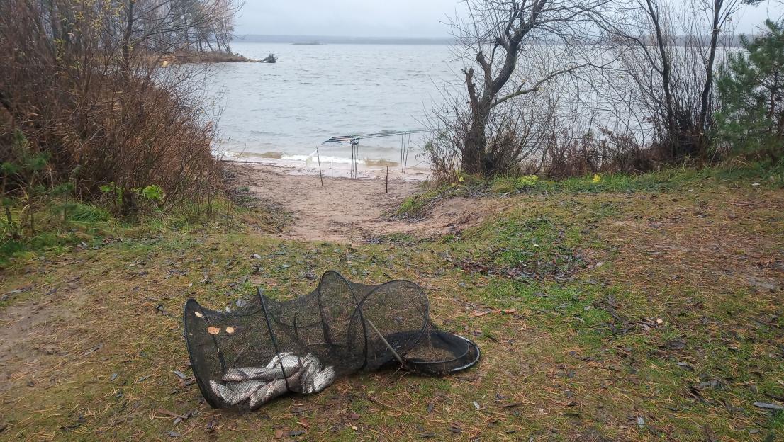 -Здравствуйте, как клев?Спрашиваю у единственного рыбака на этом ... | Отчеты о рыбалке в Беларуси
