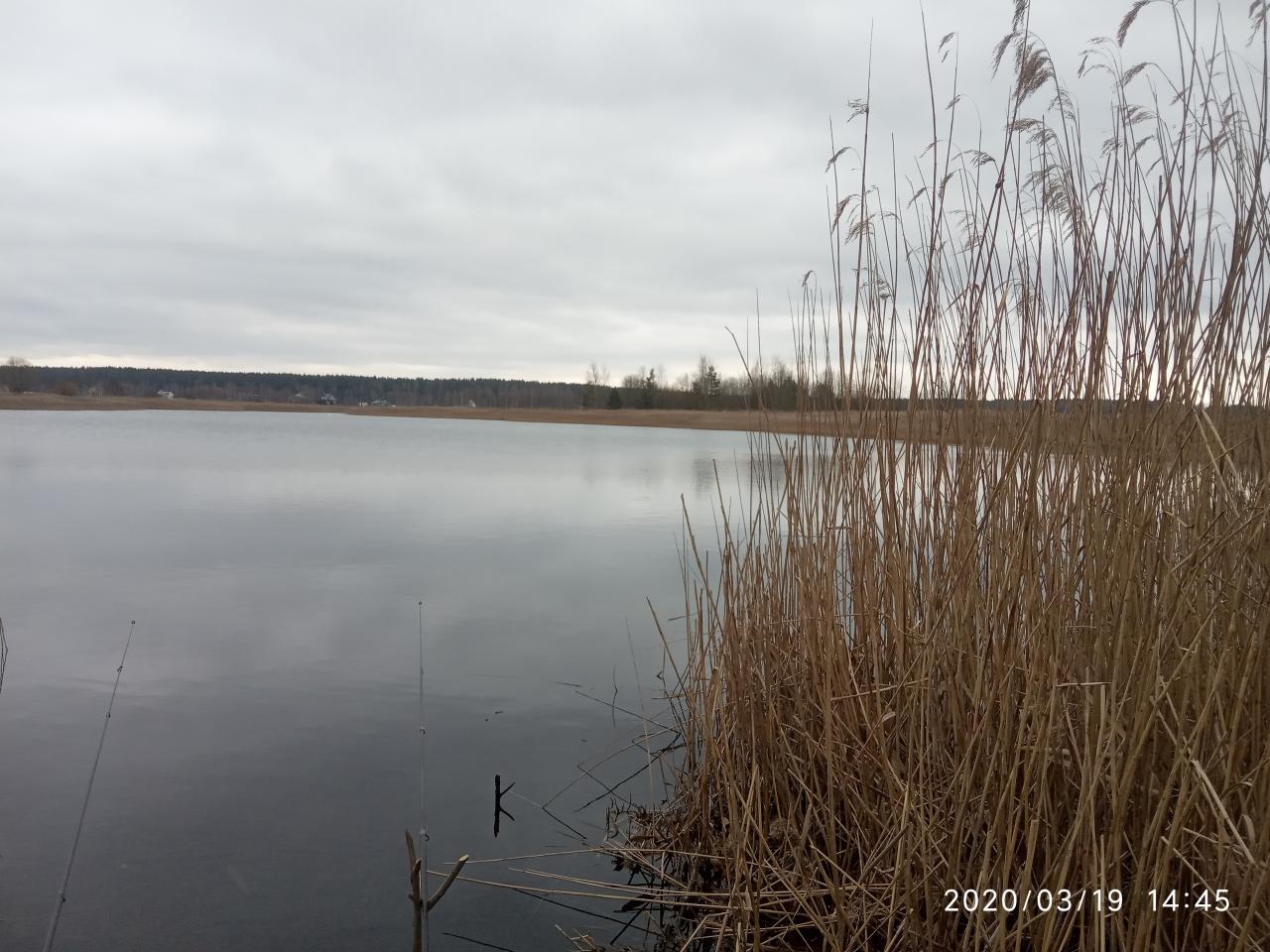 Сегодня в обед решил немного посидеть с удочкой ...   Отчеты о рыбалке в Беларуси