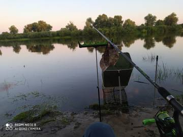 Всем привет.18-19 получилось посетить припять . Из трофеев ... | Отчеты о рыбалке в Беларуси