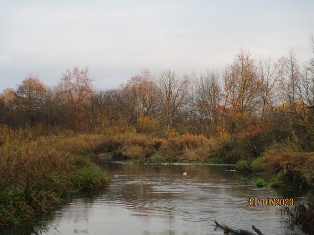 Сегодня решил продолжить исследование р. Илия. Очередной участок ...   Отчеты о рыбалке в Беларуси