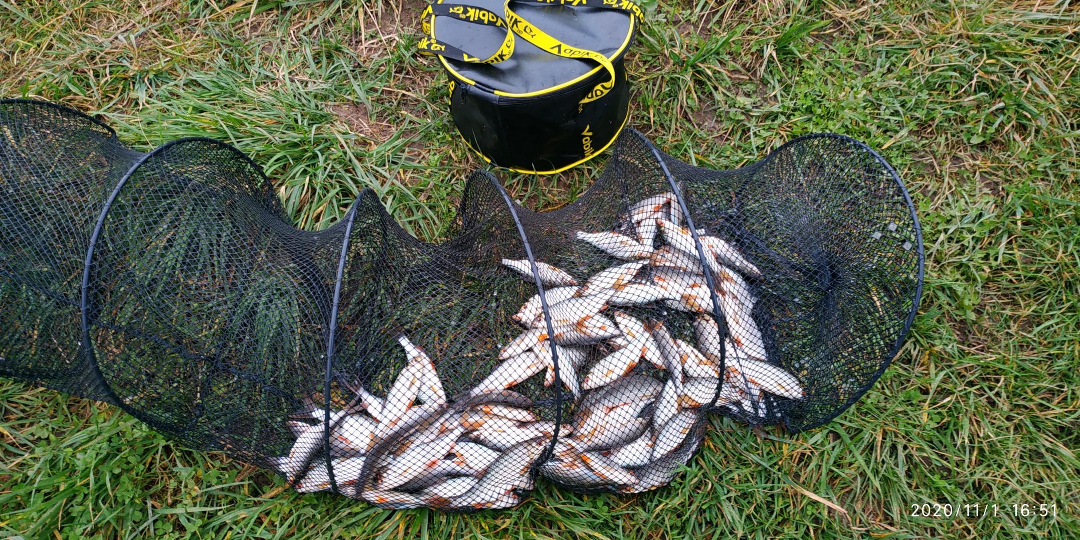 Побывал сегодня на малых раубичах. И ехать то ... | Отчеты о рыбалке в Беларуси