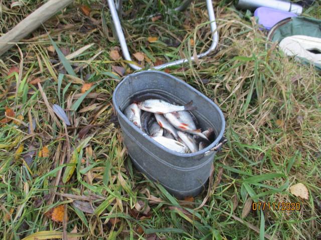 В эту субботу решил отдохнуть от щучьих рыбалок