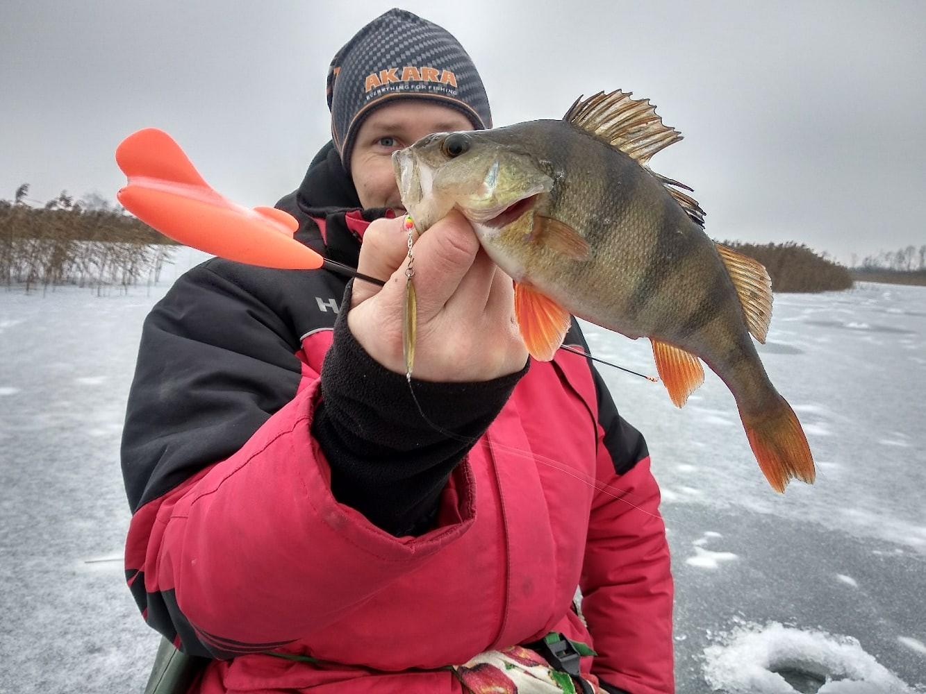 Вчера выбрались на очередные торфяники с целью погонять ... | Отчеты о рыбалке в Беларуси