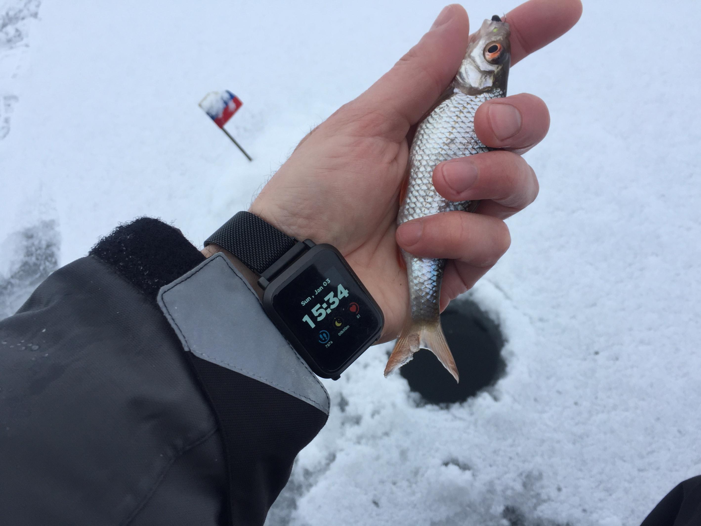 3 января 2021 г. Воскресенье ( д.Ходорова ):…Первая ... | Отчеты о рыбалке в Беларуси