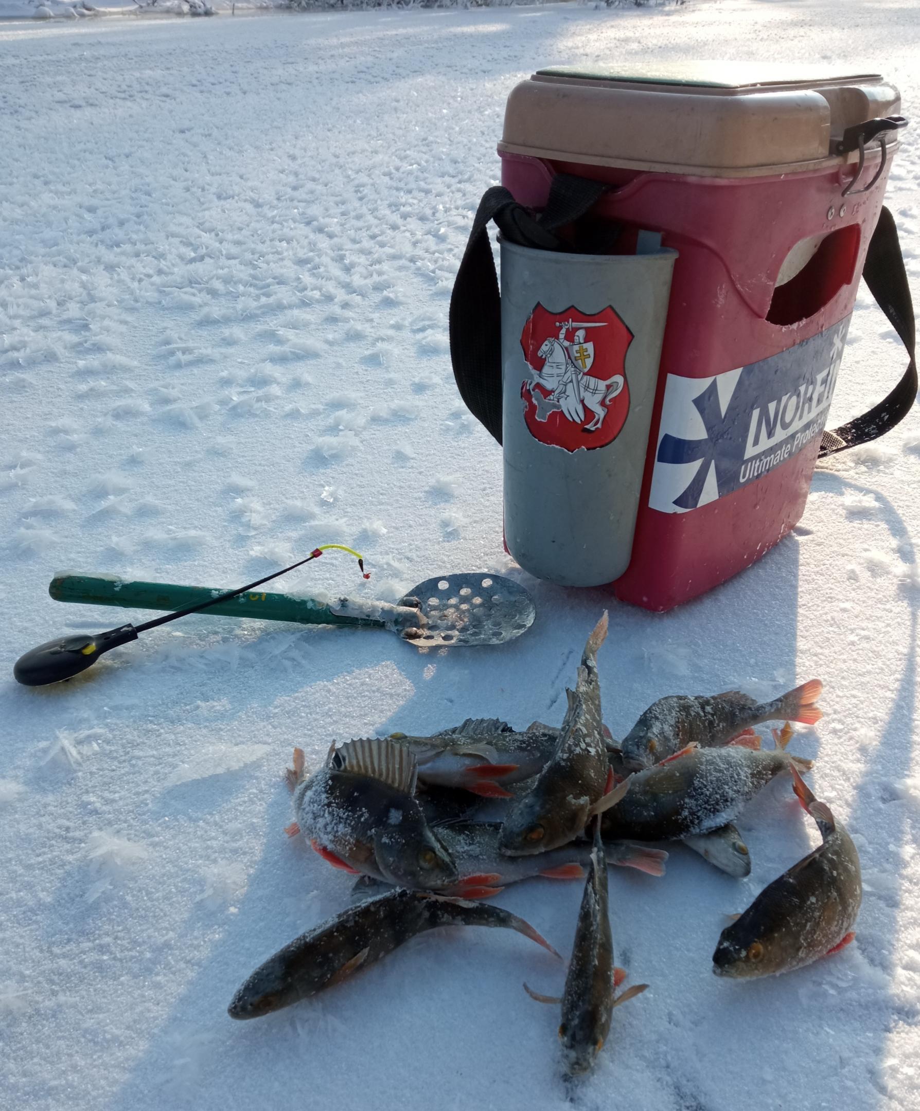 Открытие речки.Да, вы не ослышались. В -20 моя ... | Отчеты о рыбалке в Беларуси