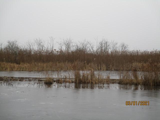 ..Сильные дожди, да и млявость после праздников перекроили ...   Отчеты о рыбалке в Беларуси
