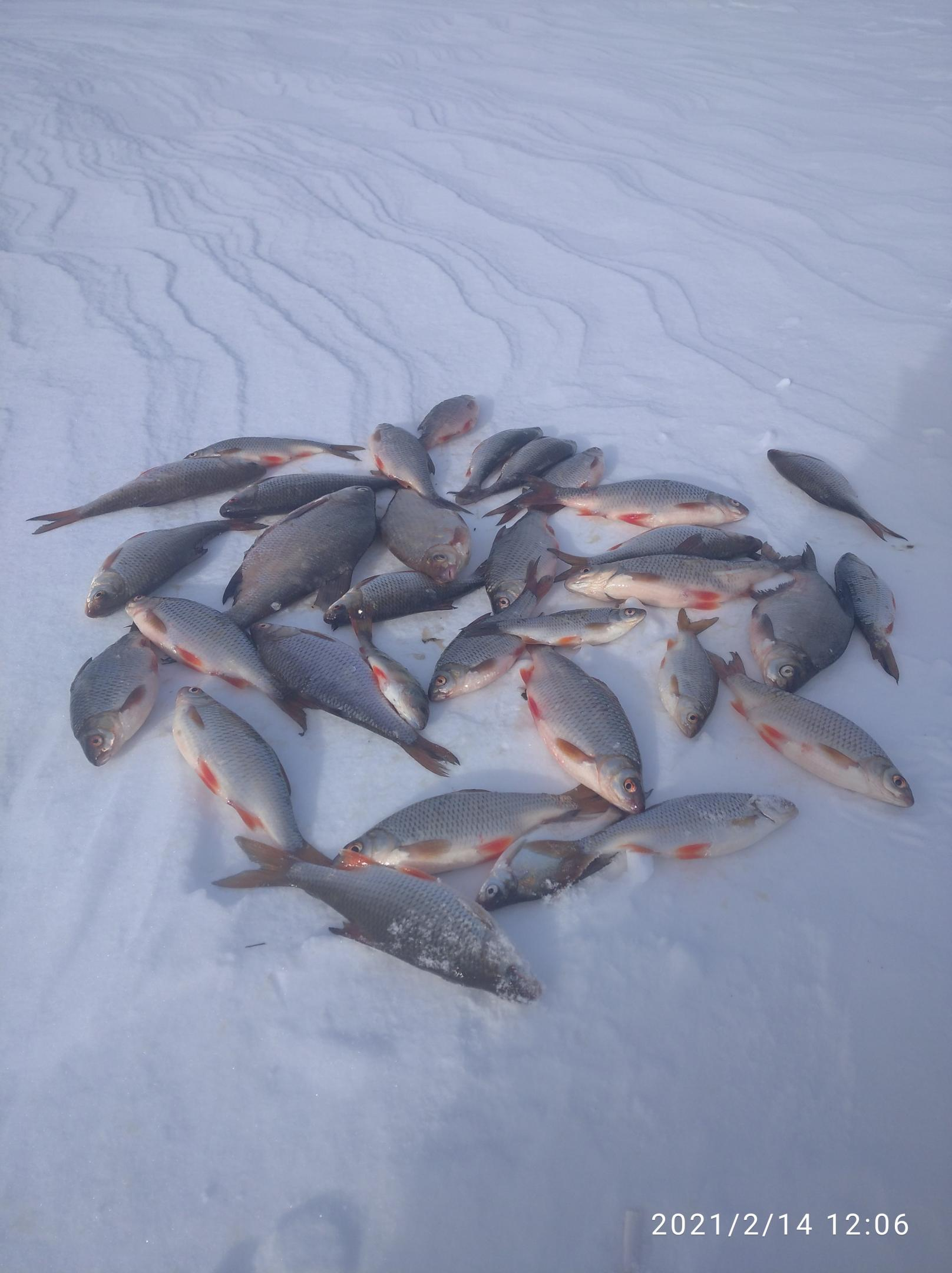 Был с пятницы вечера и до 12 часов ... | Отчеты о рыбалке в Беларуси