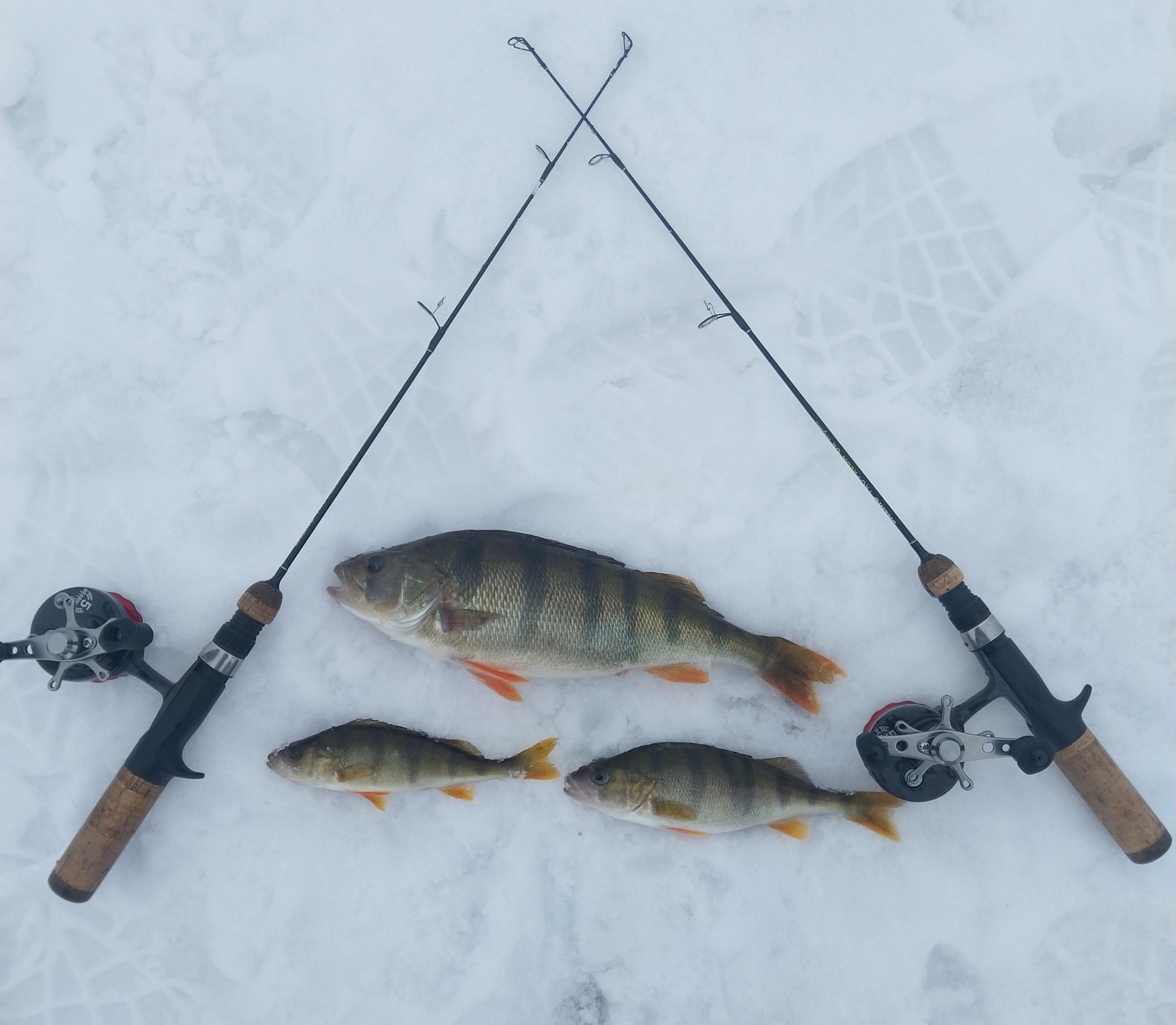 Наш небольшой семейный тандем добрался таки до Нарочи ...   Отчеты о рыбалке в Беларуси