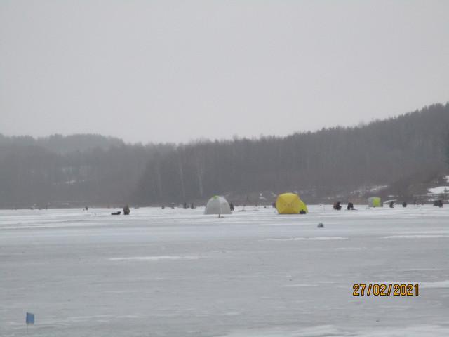 Сегодня решили закрываться по ловле на ставки на ... | Отчеты о рыбалке в Беларуси
