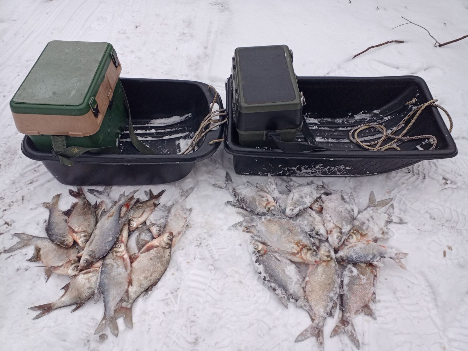 Два дня до сегодняшней рыбалки переживал