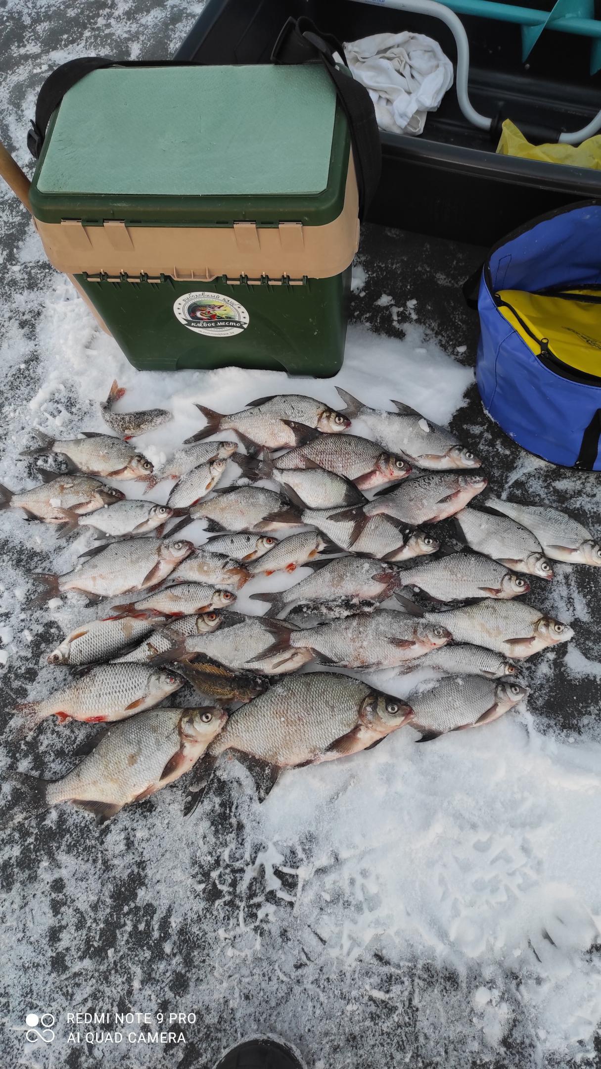 Вчера закрывал сезон в районе Рабуни.Выход на лёд ... | Отчеты о рыбалке в Беларуси