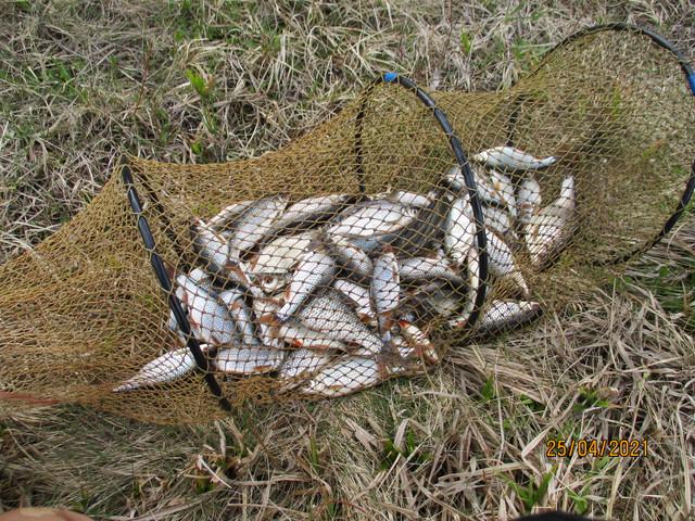 Изменить погоду не в наших силах, небесная канцелярия ... | Отчеты о рыбалке в Беларуси