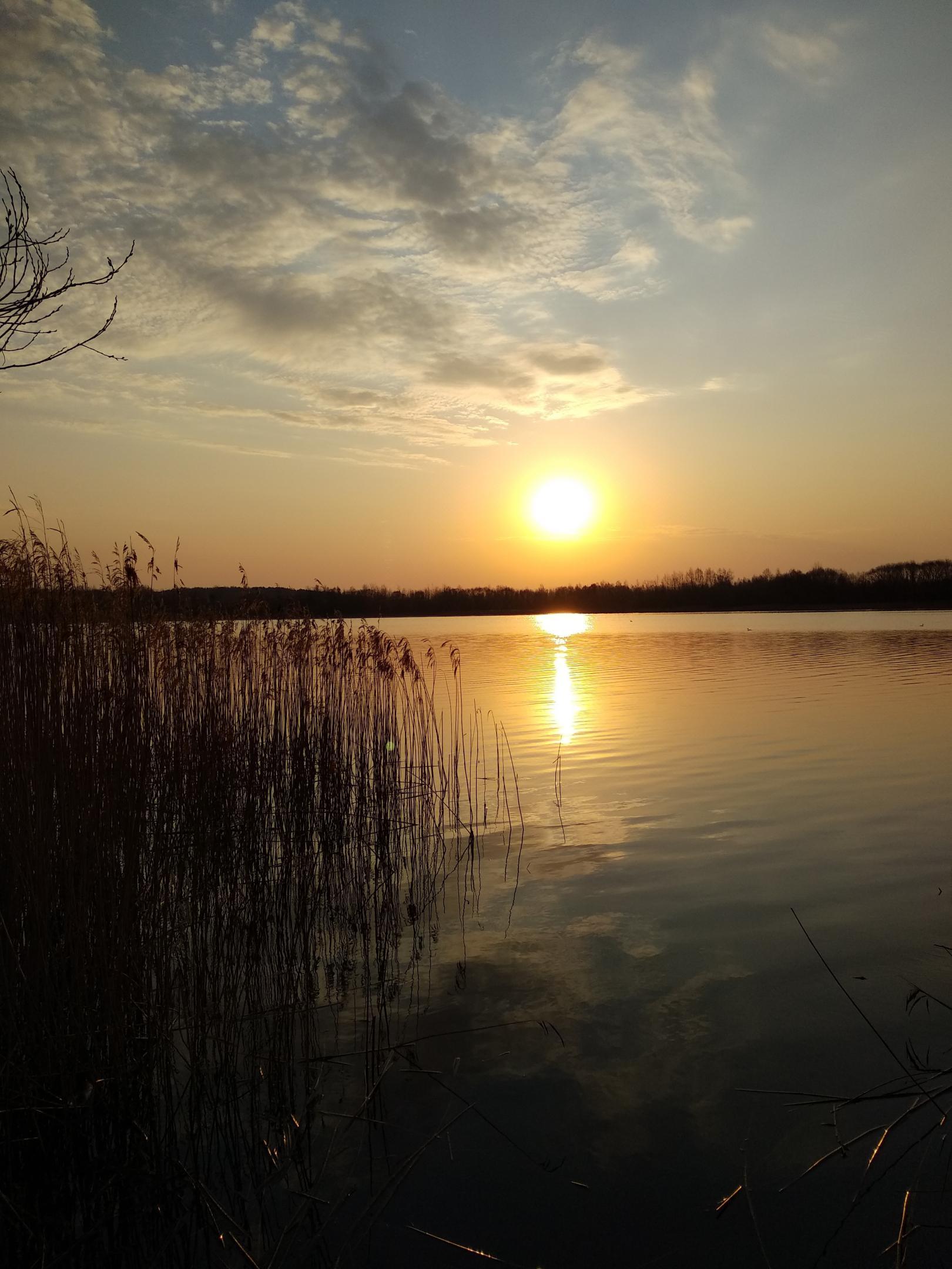 Воскресенье, подъехал к Робинсону, пешочком по лесу….. Хорошо ... | Отчеты о рыбалке в Беларуси