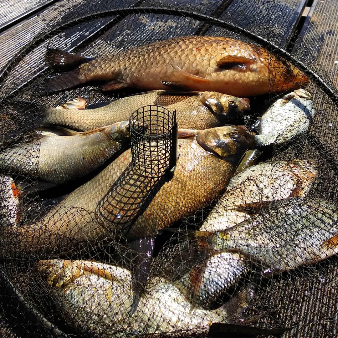 https://youtu.be/5WQPgYAfXIkНа это раз рыбалку решили провести в стиле ... | Отчеты о рыбалке в Беларуси