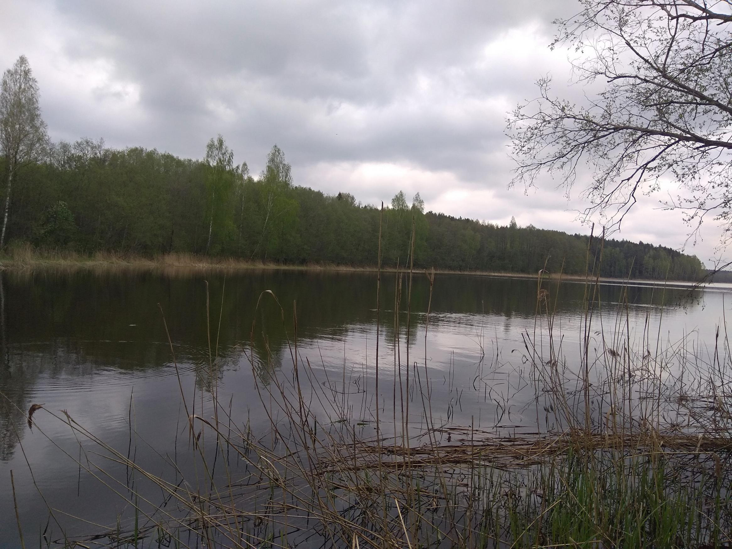 Как в большинстве моих рыболовных вылазок, и вчерашняя ... | Отчеты о рыбалке в Беларуси