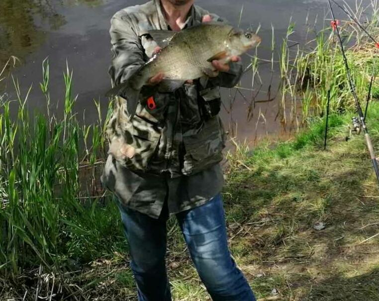 Ну наконец то выбрался на Припять(пинский район). С ...   Отчеты о рыбалке в Беларуси