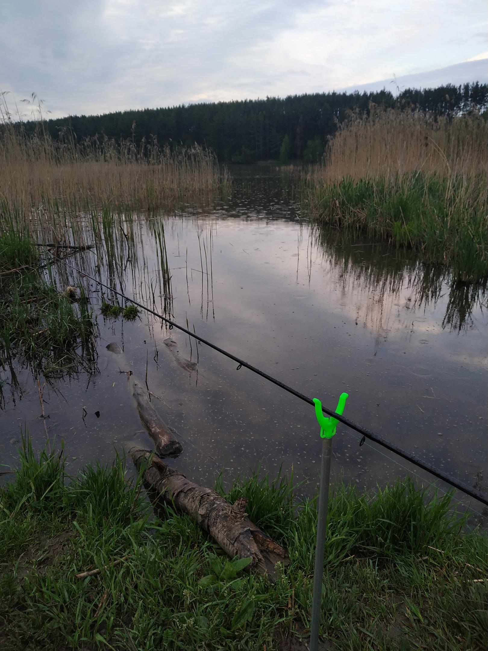 Побывал, можно сказать, на водоеме. Сунулись в болото ...   Отчеты о рыбалке в Беларуси