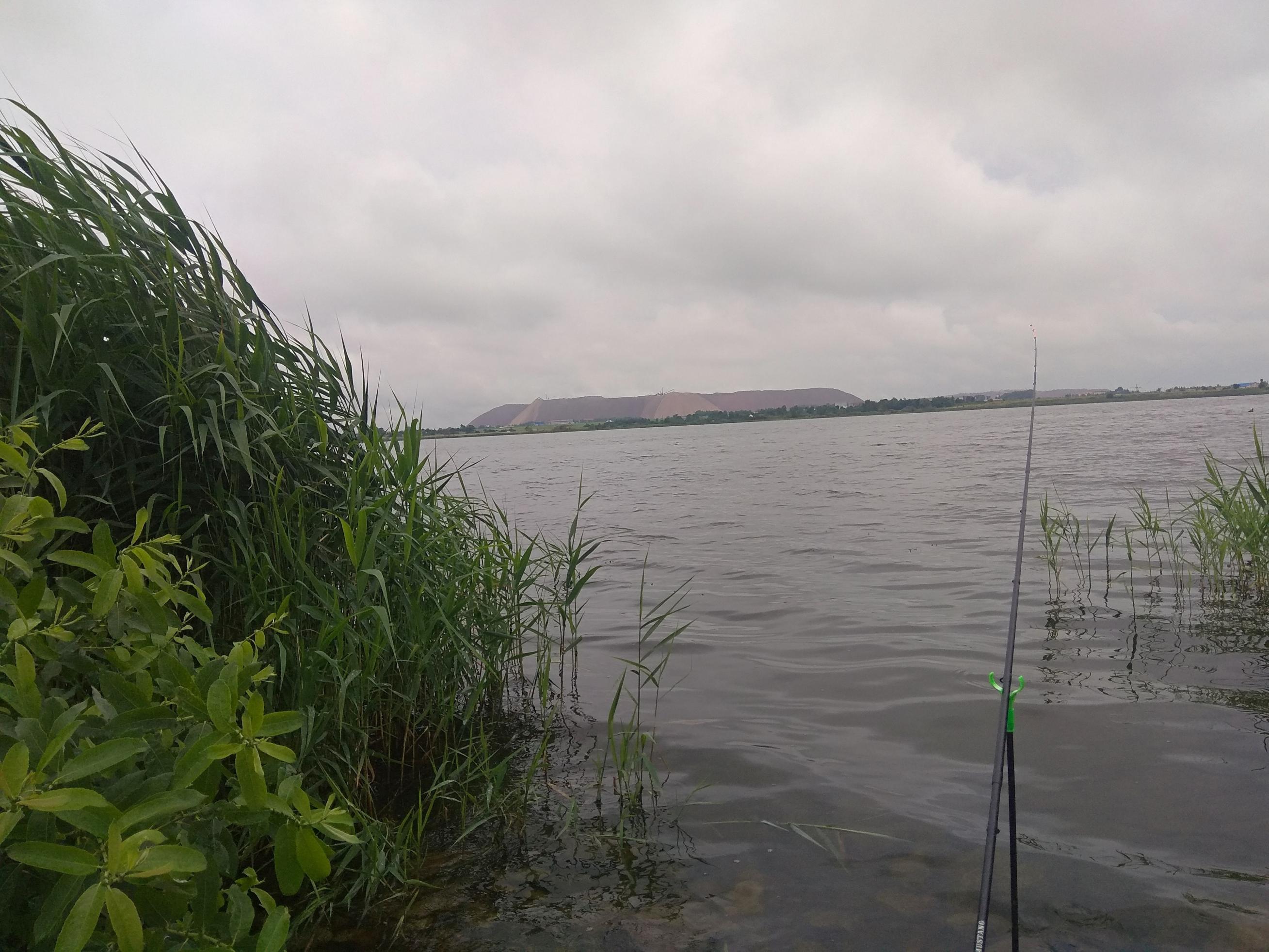 Сегодня утром приехал опять на Случь, вчера уезжал ... | Отчеты о рыбалке в Беларуси