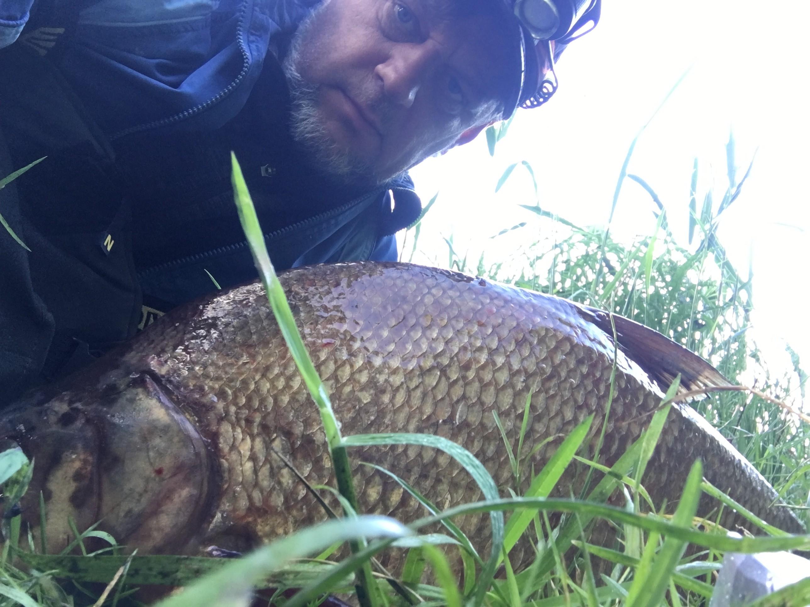 Стал по утру на камыш, половить карася и ... | Отчеты о рыбалке в Беларуси
