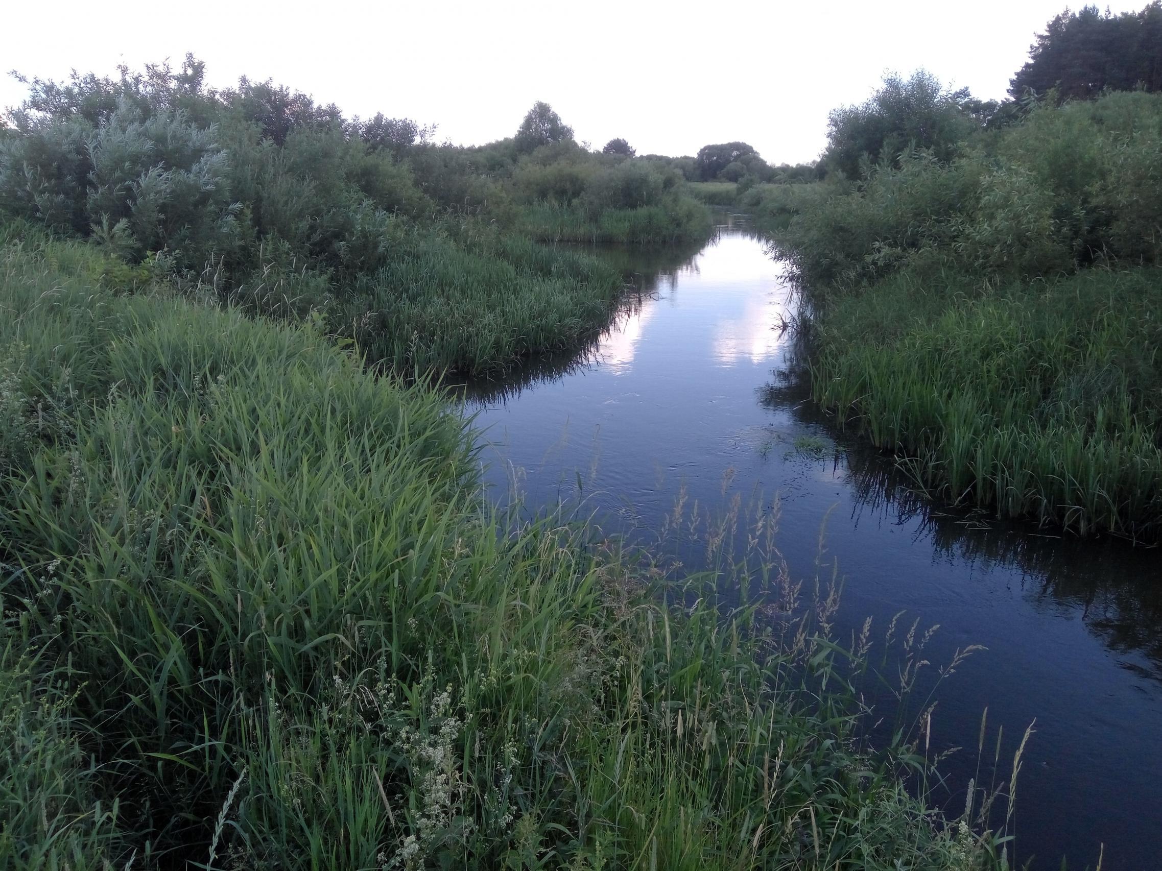 Вчера (29.06) посетил небольшую речушку. Давно хотел проверить ...   Отчеты о рыбалке в Беларуси