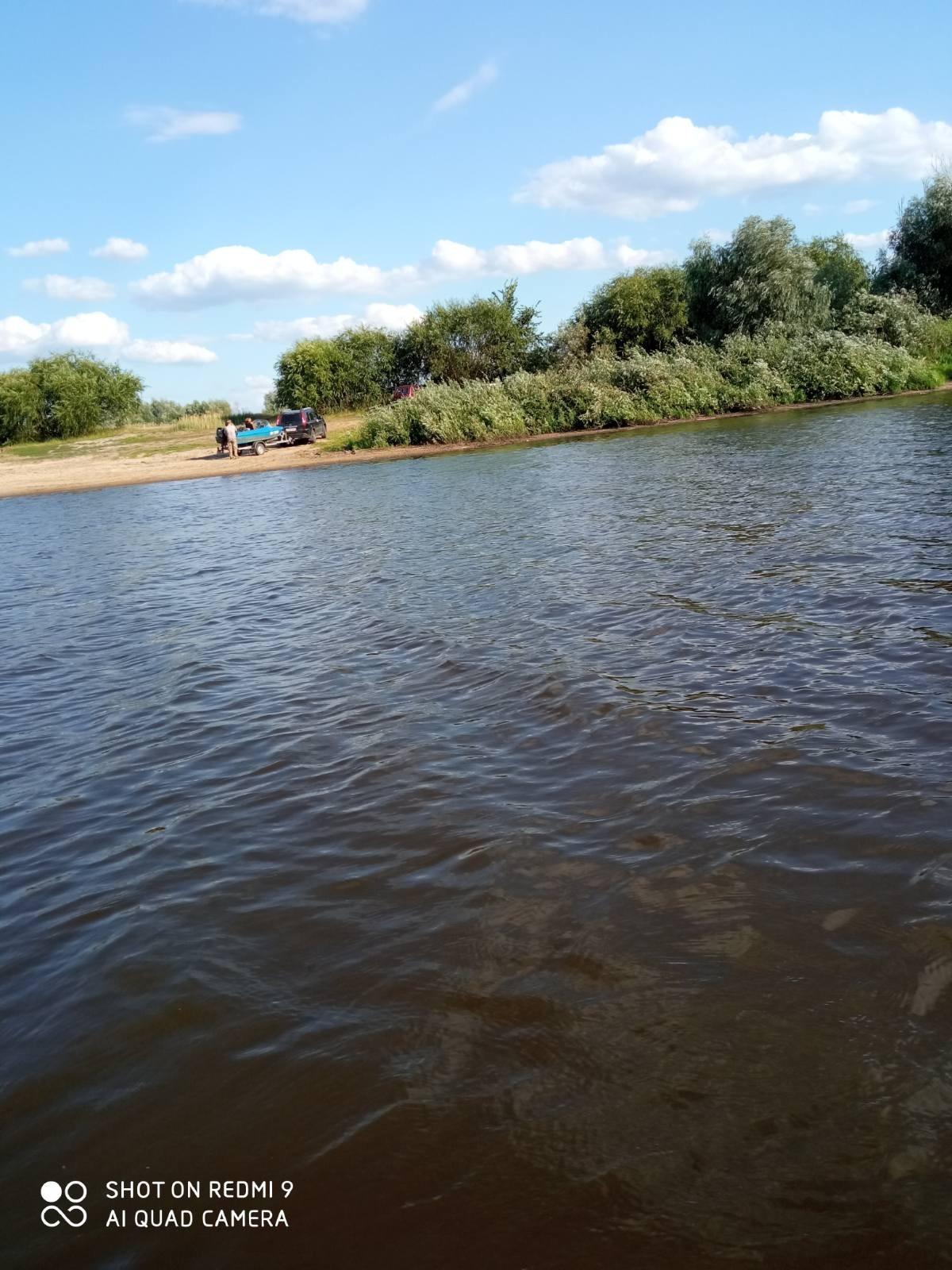 Доброго дня. Припять- район д. Погост. Выплыл под ... | Отчеты о рыбалке в Беларуси