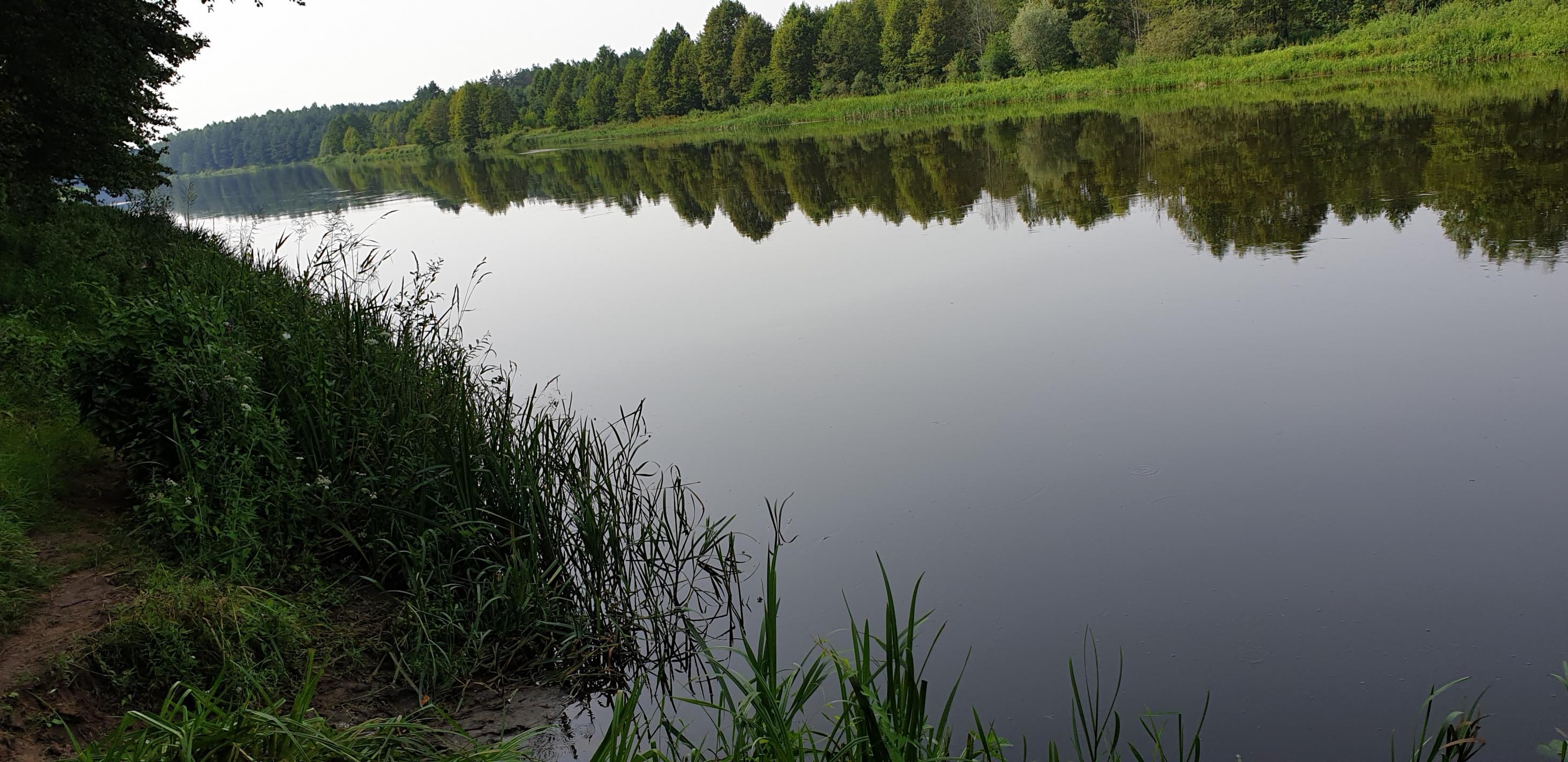 Рыбка поклевывает по чуть-чуть, несмотря на жару.Ничем не ...   Отчеты о рыбалке в Беларуси