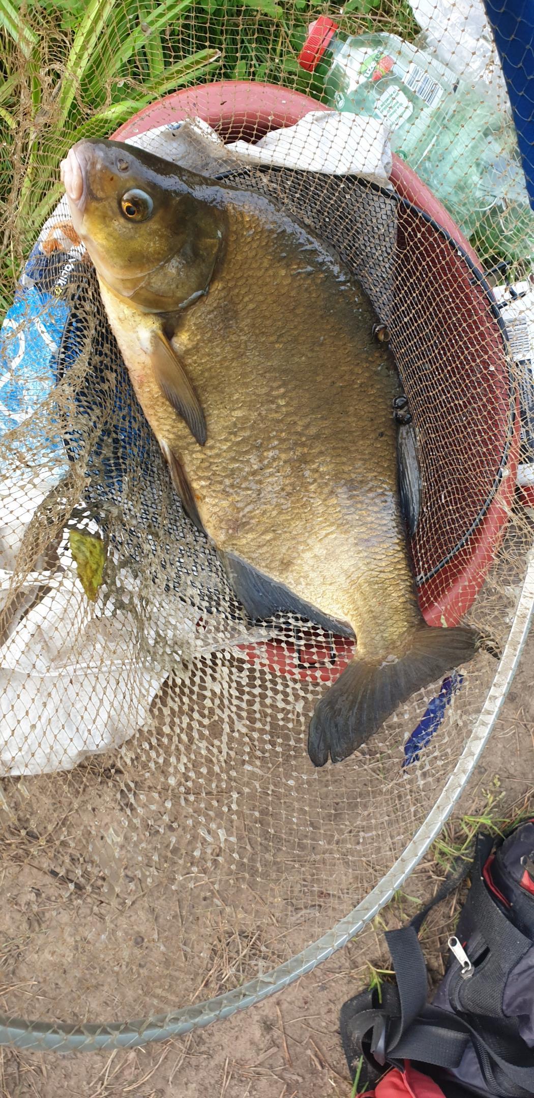 Рыбка поклевывает по чуть-чуть
