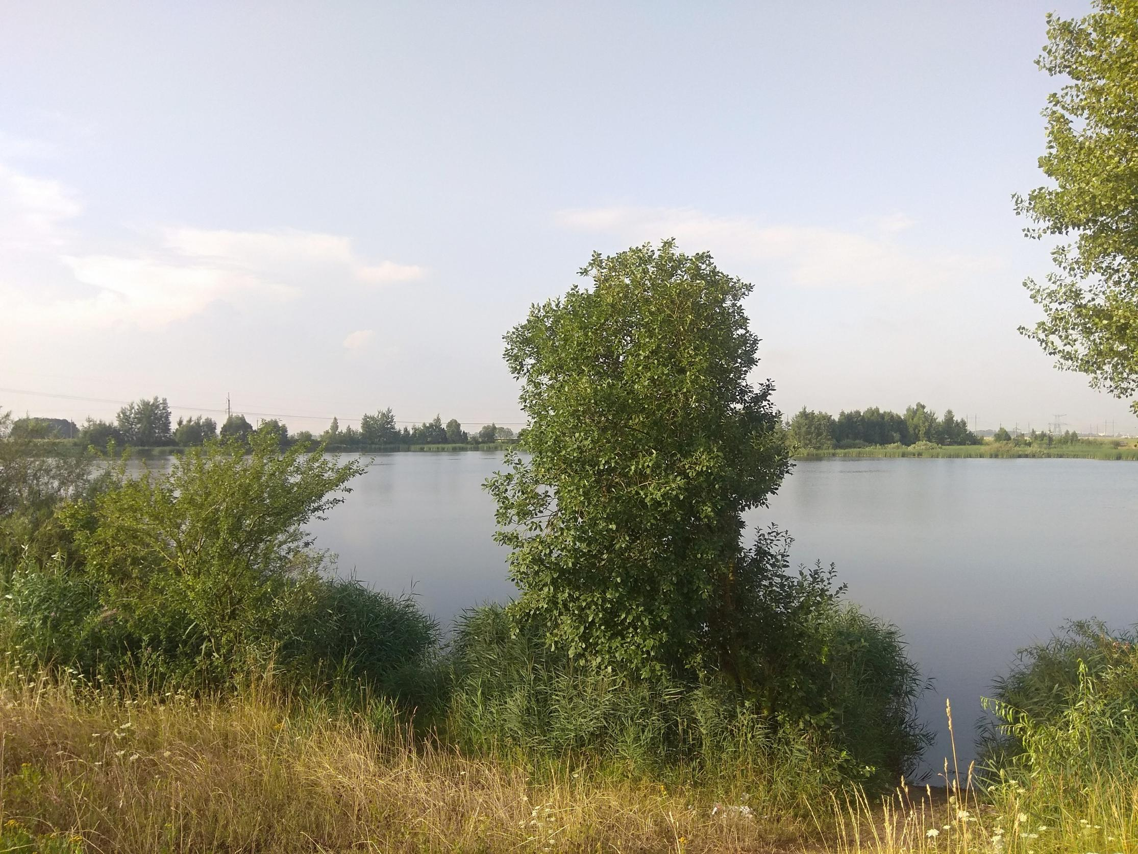 Сегодня с утра проехал немного по водоемам. На ...   Отчеты о рыбалке в Беларуси