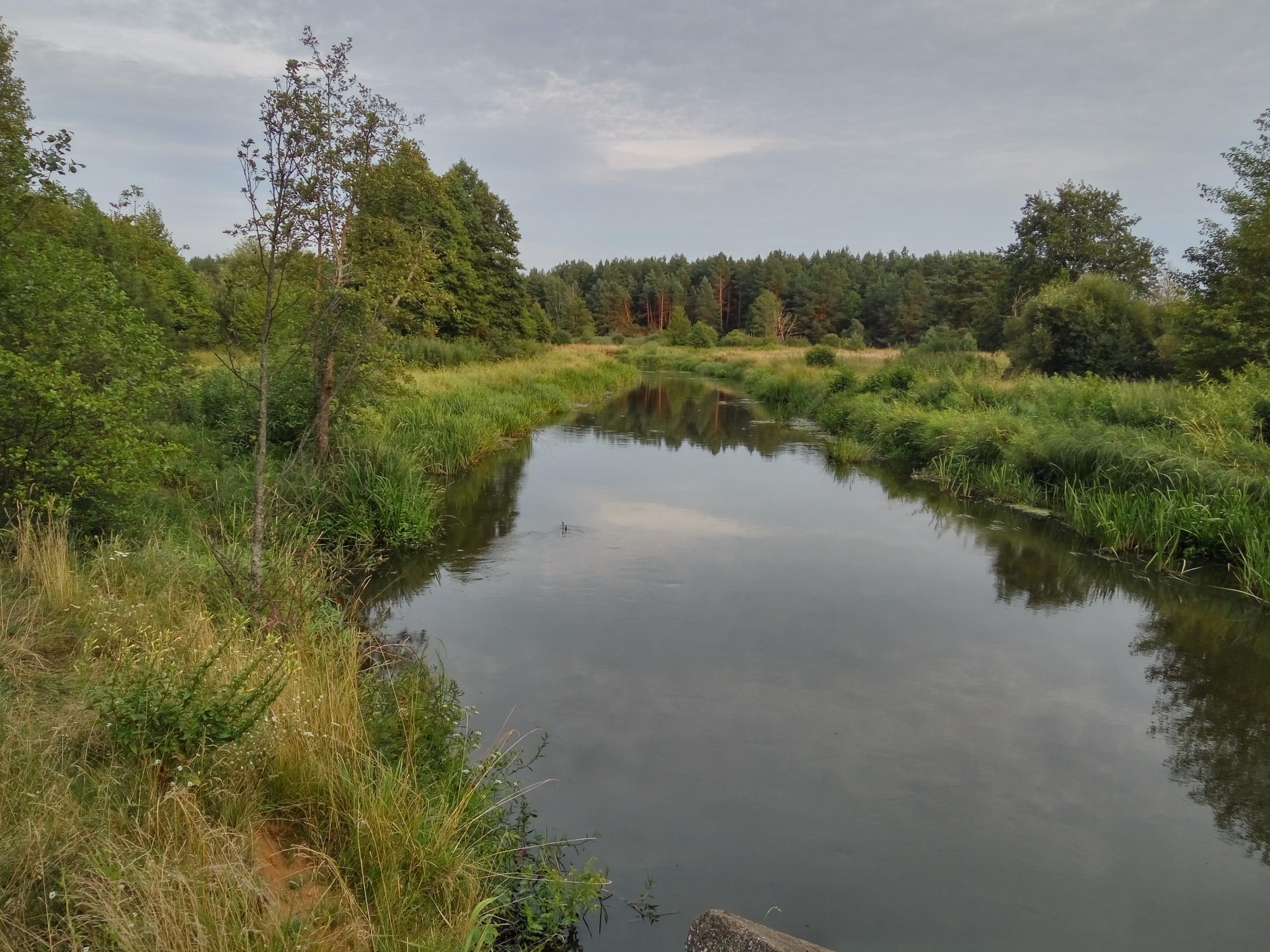 В первый день последнего месяца лета решил прокатиться ... | Отчеты о рыбалке в Беларуси