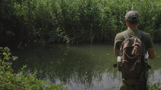 Ловля голавля спиннингом на реке